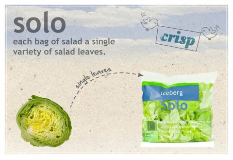 Innovative Packaging: image of Waitrose Solo Salad