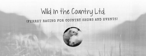 Wild In the Country strap-line and logo
