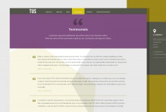 WordPress TUS Wordpress Testimonials Page