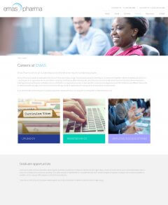 Careers page from website with image of black girl in red dress, curriculum vitae folder tab, hands on a keyboard and people applauding at at a conference